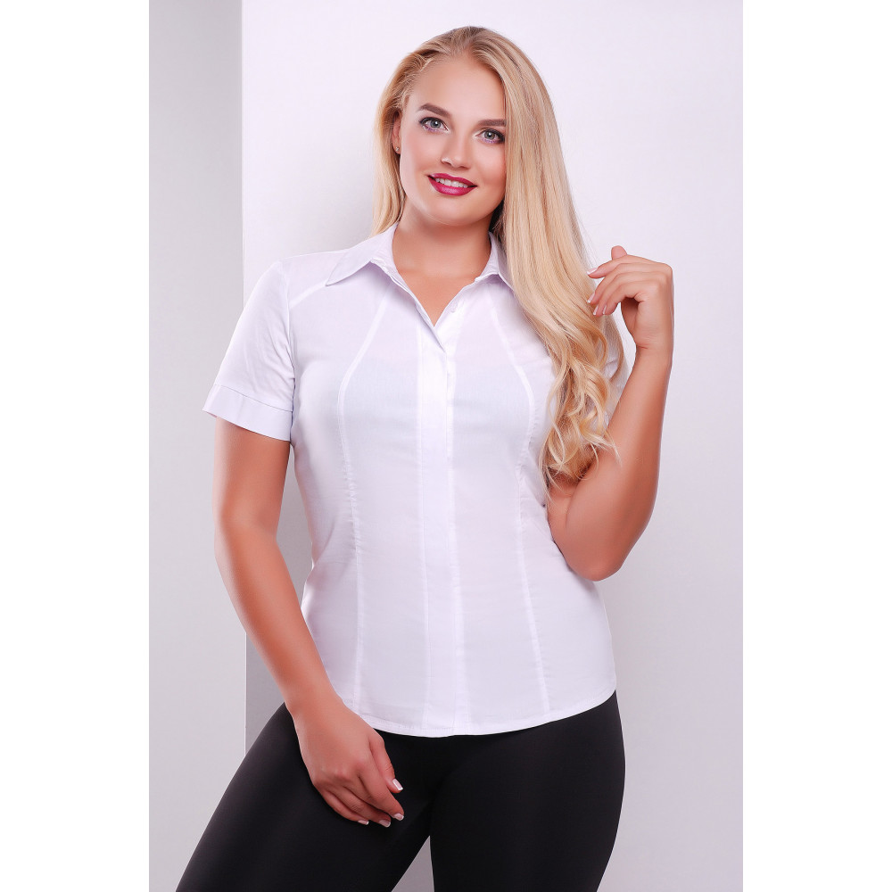 Классическая блузка Норма фото 1